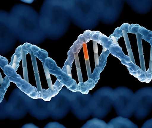 được kiểu gen của cá thể mang tính trạng trội