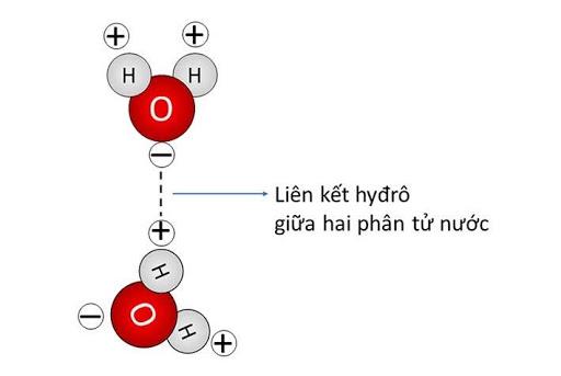 Tổng số hạt proton notron và electron trong nguyên tử của một nguyên tố là 13